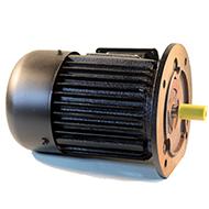 Flanšiniai asinchroniniai trifaziai elektros varikliai 960aps./min (6-polių)