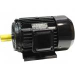 Trifazis asinchroninis elektros variklis 0.55kW (Y-801-4)